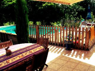Coulon Holiday Home with Pool in Beautiful Village - Coulon vacation rentals