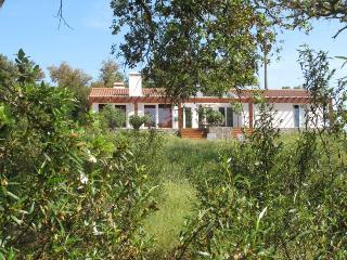 Monte Xisto Hotel Rural**** - Santiago do Cacem vacation rentals