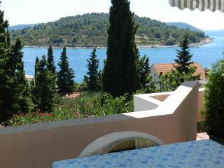 Apartments Zlatko - 22101-A2 - Prvic Luka vacation rentals