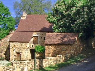 Lou jaç del marronièr - Cenac-et-Saint-Julien vacation rentals
