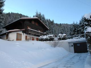 5 bedroom Ski chalet with Internet Access in Morgins - Morgins vacation rentals