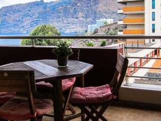 Amazing apart in Tenerife - Puerto de Santiago vacation rentals