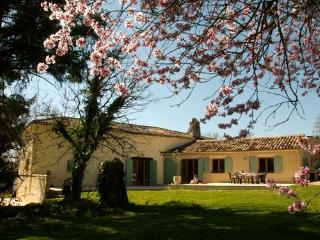 Dordogne/Lot et Garonne village villa with pool - Lacapelle-Biron vacation rentals