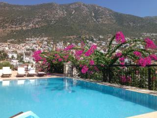 Emir Sea Apartment Kalkan - Kalkan vacation rentals