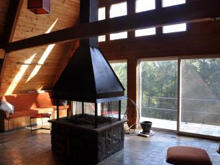 Thaddeus House 3BR - Secluded Catskills Retreat - Catskills vacation rentals