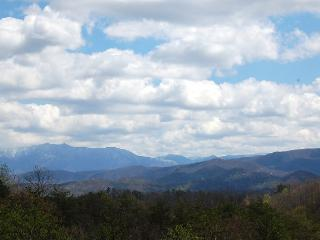 Little Honey - Pigeon Forge vacation rentals