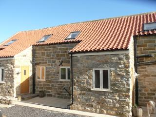 Meadowbeck Holiday Cottages Whitby - Forget-me-not - Whitby vacation rentals
