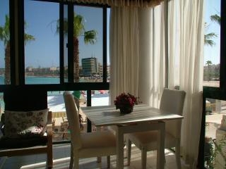 Angolina Apartment 1 - Birzebbuga vacation rentals