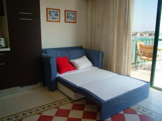 Cozy 1 bedroom Birzebbuga Condo with A/C - Birzebbuga vacation rentals