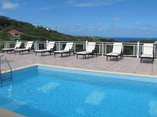 Spacious Villa great for Families and Large Groups with 2 Swimming Pools! - Petit Cul de Sac vacation rentals