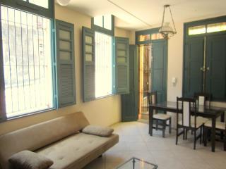 Green view,2 bedrooms,next to - Rio de Janeiro vacation rentals