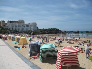 Nice 1 bedroom Condo in Biarritz - Biarritz vacation rentals