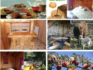 Adorable 4 bedroom Villarrica Bungalow with Hot Tub - Villarrica vacation rentals