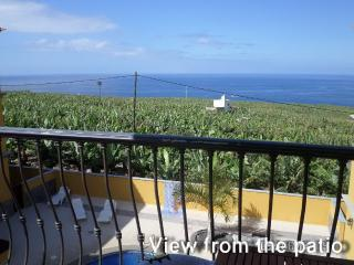 Nice 2 bedroom Apartment in Tazacorte with Internet Access - Tazacorte vacation rentals