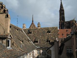 Strasbourg hypercentre : joli 3pièces - Strasbourg vacation rentals