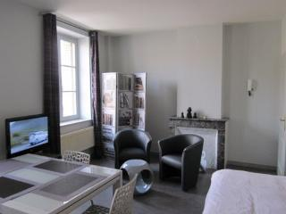 Cozy Metz Studio rental with Internet Access - Metz vacation rentals