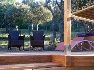 Gite La Palou with private Jacuzzi near AVIGNON - Rochefort du Gard vacation rentals