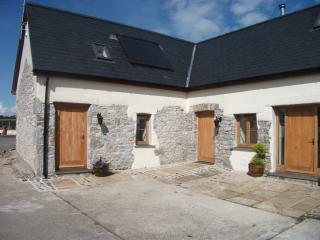 Nice 2 bedroom Cottage in Lampeter Velfrey - Lampeter Velfrey vacation rentals