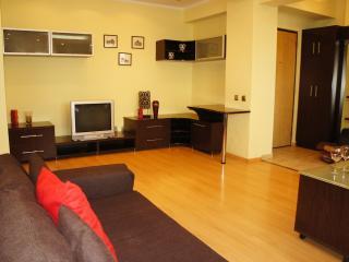 Beautiful 1 bedroom close to Cismigiu Gardens - Bucharest vacation rentals