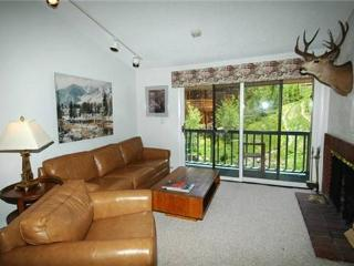 Monarch 302 - Aspen vacation rentals