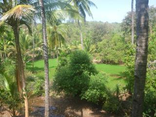 Lovely 2 bedroom Bihar Apartment with Internet Access - Bihar vacation rentals