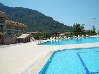 Beautiful 2 bedroom Apartment in Ovacik - Ovacik vacation rentals
