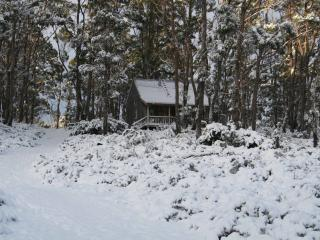 Perfect Cabin with Washing Machine and Balcony - Cradle Mountain-Lake Saint Clair National Park vacation rentals