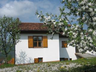 Holiday house Ložanka SPECIAL PRICE MAY - JUNE 2017 - Kobarid vacation rentals