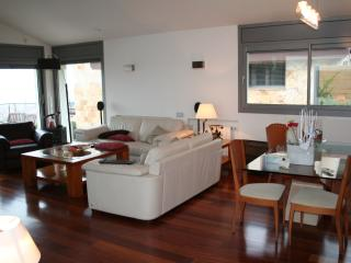 Nice Villa with Internet Access and Dishwasher - Calella vacation rentals