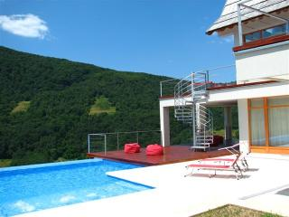 4 bedroom Villa with Internet Access in Bajina Basta - Bajina Basta vacation rentals