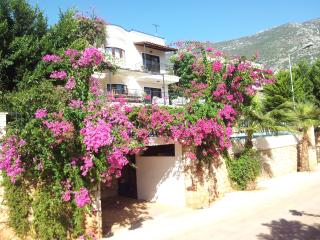 Perfect 5 bedroom Kalkan Villa with Internet Access - Kalkan vacation rentals