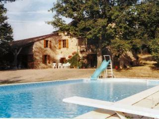 Nice 4 bedroom Farmhouse Barn in Saint-Antonin Noble Val - Saint-Antonin Noble Val vacation rentals
