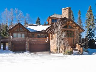 Deep in the heart of Telluride - Ski in/out, hot tub, home theatre, game room - Dallas Peak Manor - Mountain Village vacation rentals