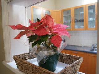 Salisbury Cottage 2   Homely Charm in Subiaco - Subiaco vacation rentals