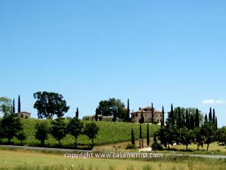 Secluded villa with private pool 30 kms from Todi, 110 from Rome. 9 bedrooms. - Castel dell'Aquila vacation rentals