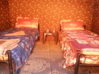 Bright 40 bedroom Wadi Rum Lodge with Parking - Wadi Rum vacation rentals