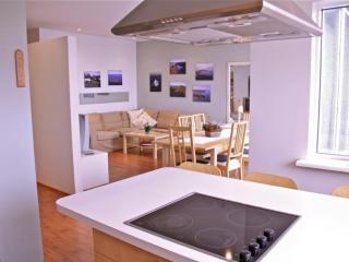2 bedroom House with Internet Access in Reykjavik - Reykjavik vacation rentals