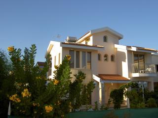 Palm Beach Villa - Oroklini vacation rentals