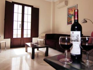 Granada - Seville vacation rentals