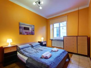 Cozy flat in the centre of Vilnius - Vilnius vacation rentals