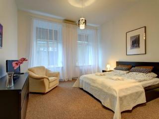 Central Apartment with FREE PARKING - Vilnius vacation rentals
