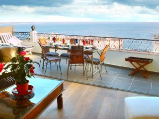 Stunning 3 bedroom penthouse apartment with balcony in Suqet, Cannes - Cannes vacation rentals