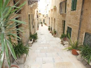 2 bedroom House with Internet Access in Birgu (Vittoriosa) - Birgu (Vittoriosa) vacation rentals