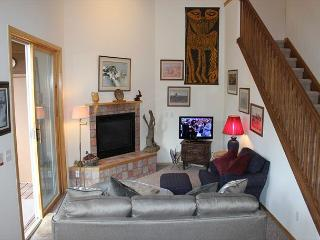 BR216G Roomy Condo w/Great Views, Wifi, Fireplace, Clubhouse & Carport - Silverthorne vacation rentals