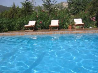 Casa Manuela - San Jose vacation rentals