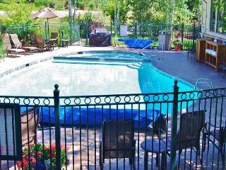 Perfect vacation condo with ski area one block and private shuttle - Steamboat Springs vacation rentals