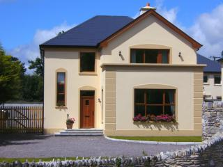 Nice 3 bedroom House in Kenmare with Satellite Or Cable TV - Kenmare vacation rentals