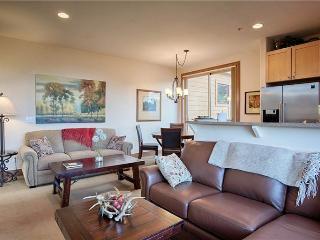 Beautiful 2 bedroom Condo in Breckenridge - Breckenridge vacation rentals