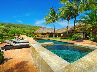 Hale Nene - Kilauea vacation rentals