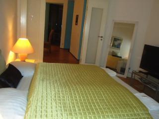 Large Copenhagen apartment near Christianshavn & Metro - Copenhagen vacation rentals